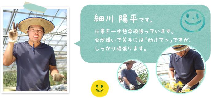 細川 陽平:仕事を一生懸命頑張っています。 虫が嫌いで苦手には「助けて~」ですが、 しっかり頑張ります。